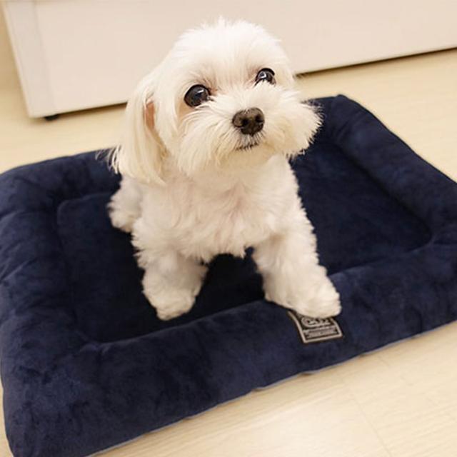 【寵物】Lifeapp 狗狗寵物床墊 防蟎防潮 4D 超彈力纖維設計 毛小孩睡得舒適分享!